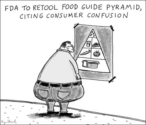 food guide pyramid comic